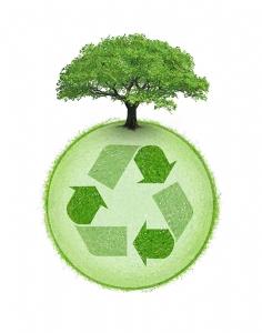 recyclage_1___HI_621321